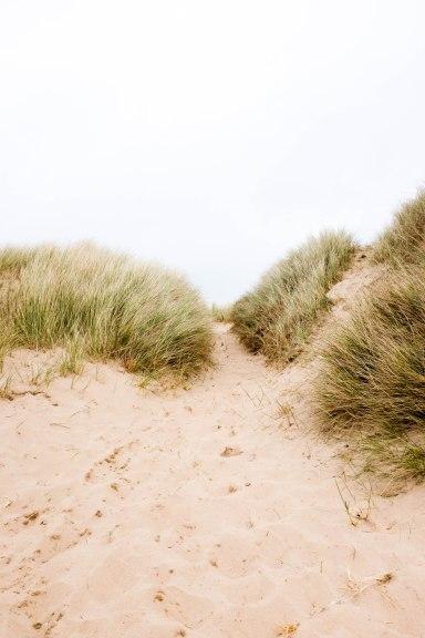Sand dune pathway